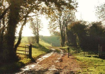 IMG_4415_Lower-Farm