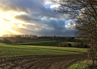 Snapseed_Lower-Farm